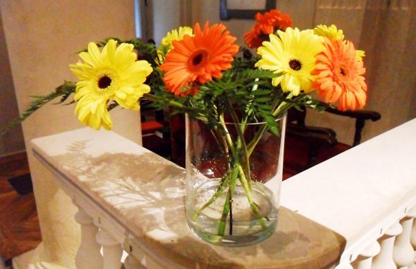 2014-05-18-flowers